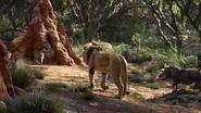Lionking2019-animationscreencaps.com-8011