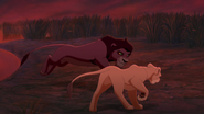 Lion-king2-disneyscreencaps.com-4121