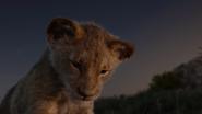 Lionking2019-animationscreencaps.com-3585