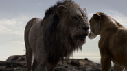 Lionking2019-animationscreencaps.com-7462