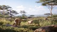 Lionking2019-animationscreencaps.com-2324