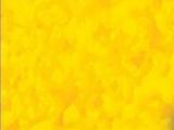 The Lion Guard: Unleash the Power!