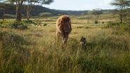 Lionking2019-animationscreencaps.com-1522