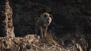 Lionking2019-animationscreencaps.com-3388