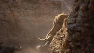 Lionking2019-animationscreencaps.com-4949