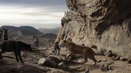 Lionking2019-animationscreencaps.com-7333
