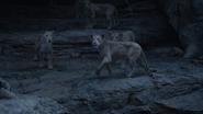 Lionking2019-animationscreencaps.com-11225