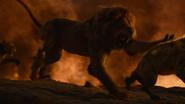 Lionking2019-animationscreencaps.com-11968