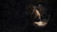 Lionking2019-animationscreencaps.com-3244