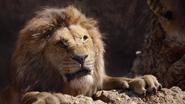 Lionking2019-animationscreencaps.com-5050