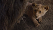 Lionking2019-animationscreencaps.com-5438