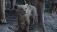 Lionking2019-animationscreencaps.com-5847