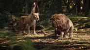 Lionking2019-animationscreencaps.com-9133