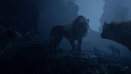Lionking2019-animationscreencaps.com-4199