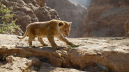 Lionking2019-animationscreencaps.com-4562