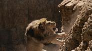 Lionking2019-animationscreencaps.com-5076
