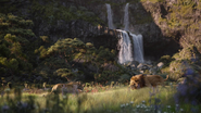 Lionking2019-animationscreencaps.com-9381
