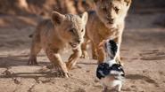 Lionking2019-animationscreencaps.com-2442