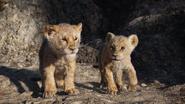 Lionking2019-animationscreencaps.com-3414