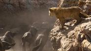 Lionking2019-animationscreencaps.com-4929