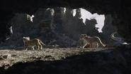Lionking2019-animationscreencaps.com-2892