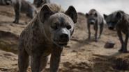 Lionking2019-animationscreencaps.com-7308