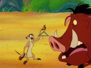 BB Timon & Pumbaa4
