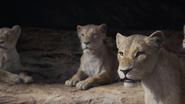 Lionking2019-animationscreencaps.com-7309