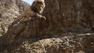 Lionking2019-animationscreencaps.com-4804