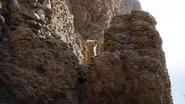 Lionking2019-animationscreencaps.com-5015