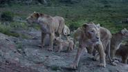 Lionking2019-animationscreencaps.com-5884