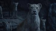 Lionking2019-animationscreencaps.com-11297