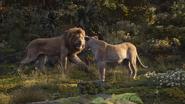 Lionking2019-animationscreencaps.com-9791