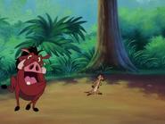 HTBTHCR Timon & Pumbaa7
