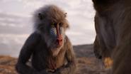 Lionking2019-animationscreencaps.com-293