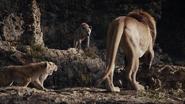 Lionking2019-animationscreencaps.com-3372