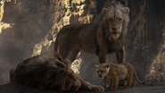 Lionking2019-animationscreencaps.com-5354