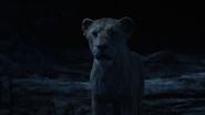 Lionking2019-animationscreencaps.com-7827
