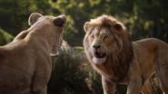 Lionking2019-animationscreencaps.com-9141