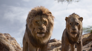 Lionking2019-animationscreencaps.com-4799
