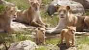 Lionking2019-animationscreencaps.com-2102