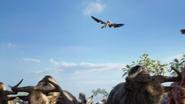 Lionking2019-animationscreencaps.com-2568