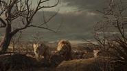 Lionking2019-animationscreencaps.com-10862