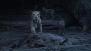 Lionking2019-animationscreencaps.com-11230
