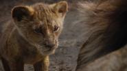 Lionking2019-animationscreencaps.com-5229