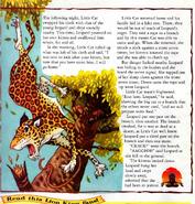 Leopardcat2
