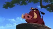 Lion-king2-disneyscreencaps.com-804