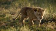 Lionking2019-animationscreencaps.com-1668