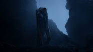 Lionking2019-animationscreencaps.com-4248