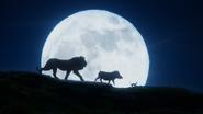 Lionking2019-animationscreencaps.com-6913